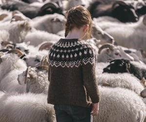 mini human sheep queue image