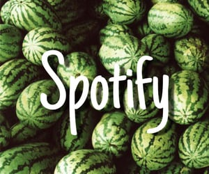 aesthetic, app, and watermelons image