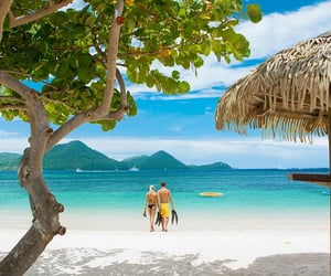 st. lucia, beachfront resort, and couples only travel image