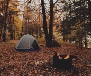 autumn, camping, and leaves image