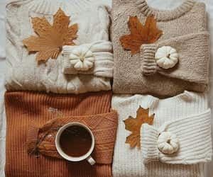 aesthetic, articles, and autumn image