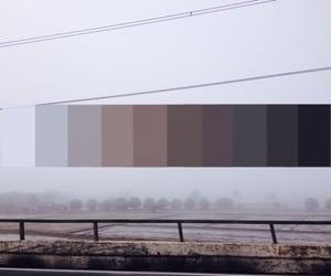black, brown, and gray image