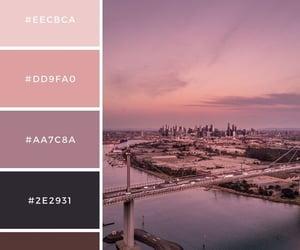 black, brown, and pink image