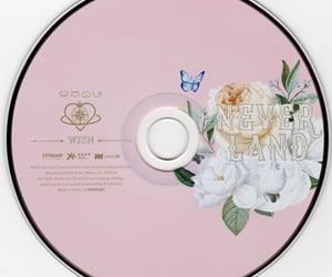 cd, icons, and neverland image