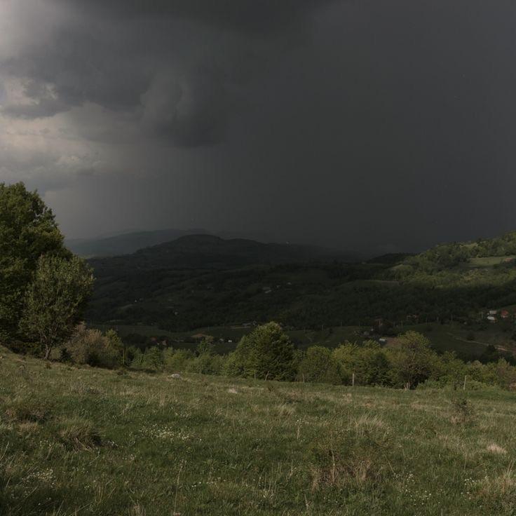 nature, aesthetic, and rain image