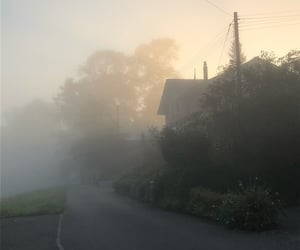 fog, photography, and morning image