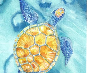 animals, illustrations, and ocean image