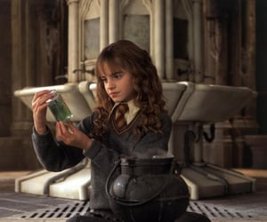 harry potter and hermionegranger image
