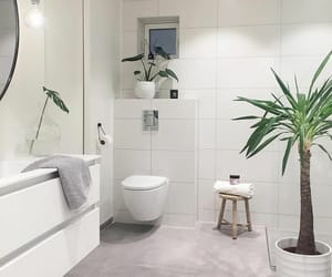 bathroom, Blanc, and green image