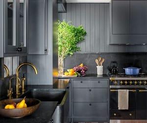 black, gris, and plants image