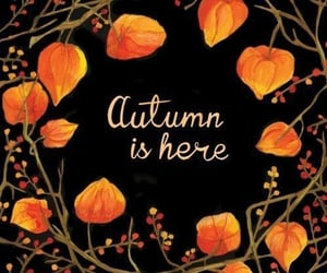 autumn, autumn is here, and fall image