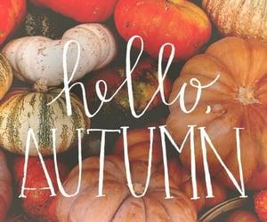 fall, hello autumn, and autumn image