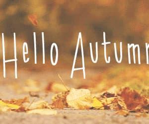 autumn, gif, and autumn leaves image