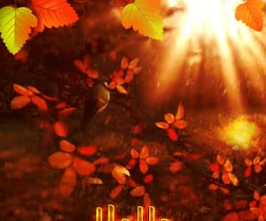 aesthetic, autumn, and gif image