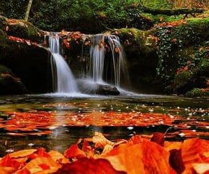 beautiful scenery, photography, and aesthetic image