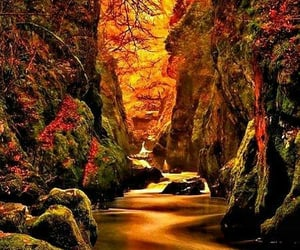 aesthetic, autumn, and beautiful places image