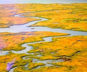 aerial photography, colors, and surface image