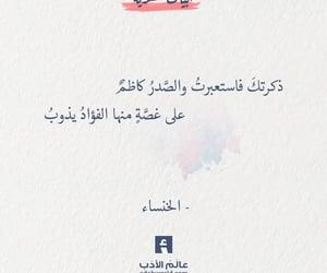 Image by ali_amer74