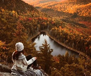 fall, autumn, and chill image