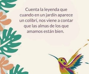 colibri, vida, and frases image