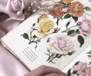aesthetic, flowers, and gif image
