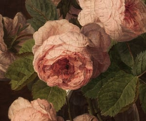 painting, rose, and flowers image