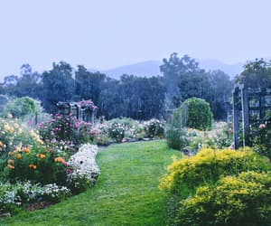 aesthetic, enchanted, and flowers image