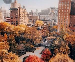 Autumn air in the city. 🍂🌾🍁⚡🖤
