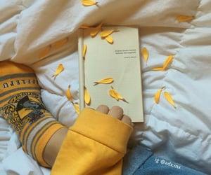 yellow, hufflepuff, and book image