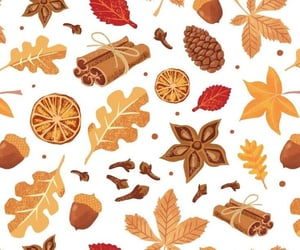 background, Cinnamon, and fall image