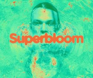 5sos, superbloom, and ashton image