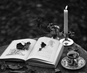 autumn, film, and book image