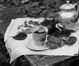 black and white, Film Photography, and still life image