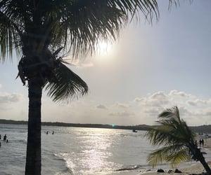 beach, ocean, and s image