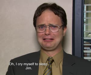 dwight schrute and the office image