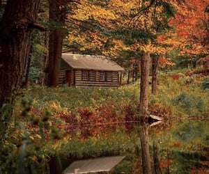 air, autumn, and cabin image
