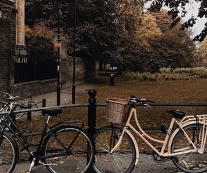 amsterdam, autumn, and cities image