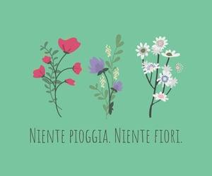 fiori, indie, and italia image