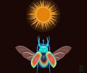 beetle, sun, and bug image