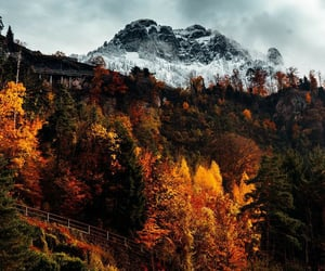 autumn, fall, and mountain image