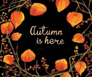 autumn, family, and home decoration image