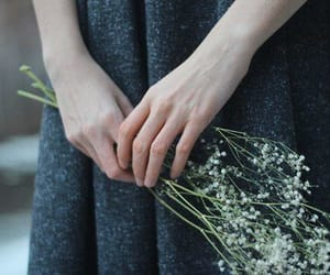aesthetic, flowers, and mourning image