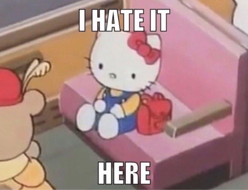 memes, funny, and hello kitty image