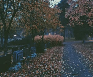 atmosphere, autumn, and cemetery image