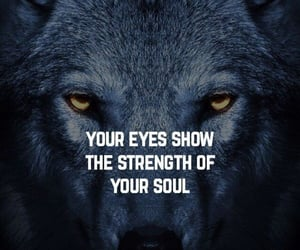 alpha, life, and motivational image