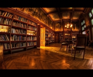books, holland, and library image