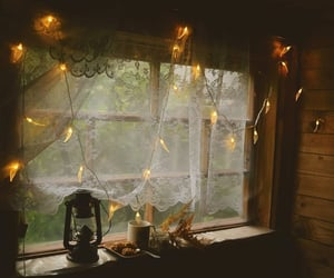 autumn, coffee, and lights image