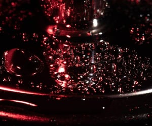 abstract photography, bubbly, and marsala image