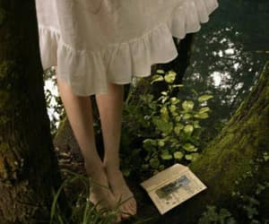 book, nature, and dress image