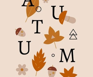 autumn, illustration, and nature image